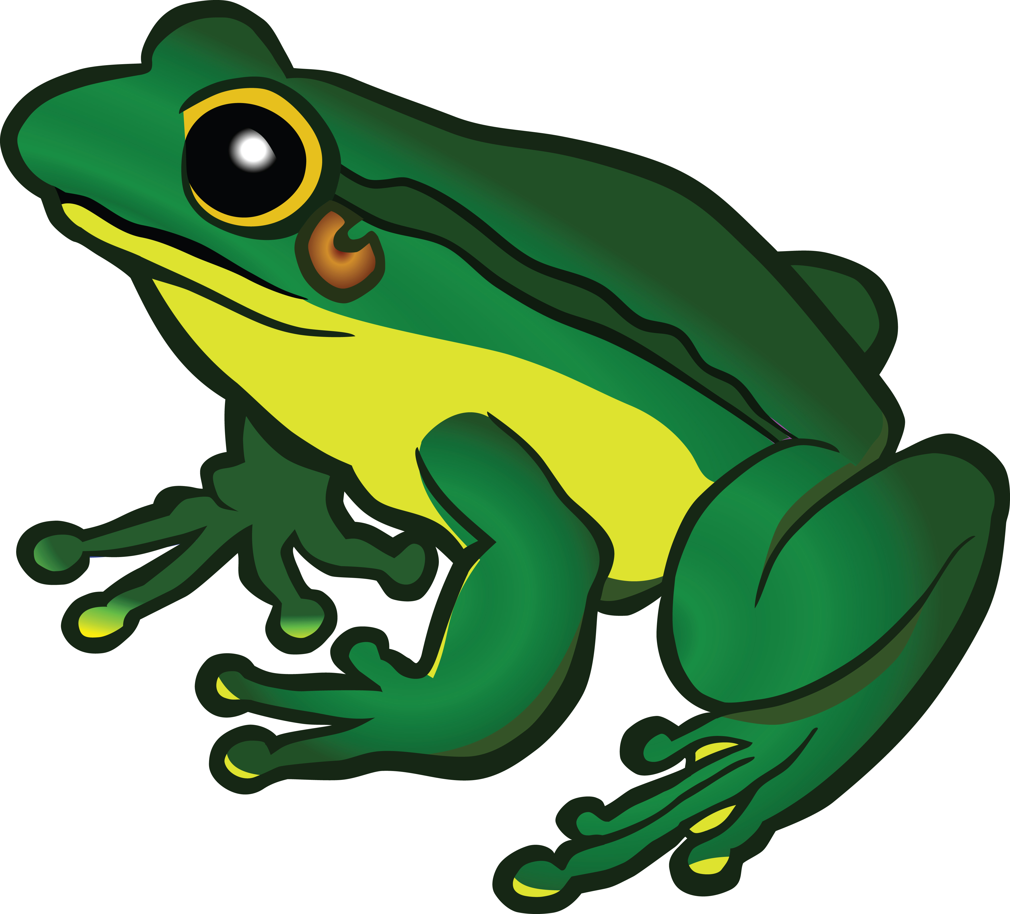 Free Clipart Frog Images.