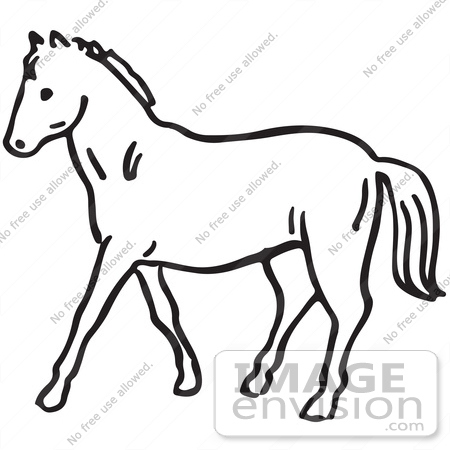 Clipart Of A Horse In Black And White.