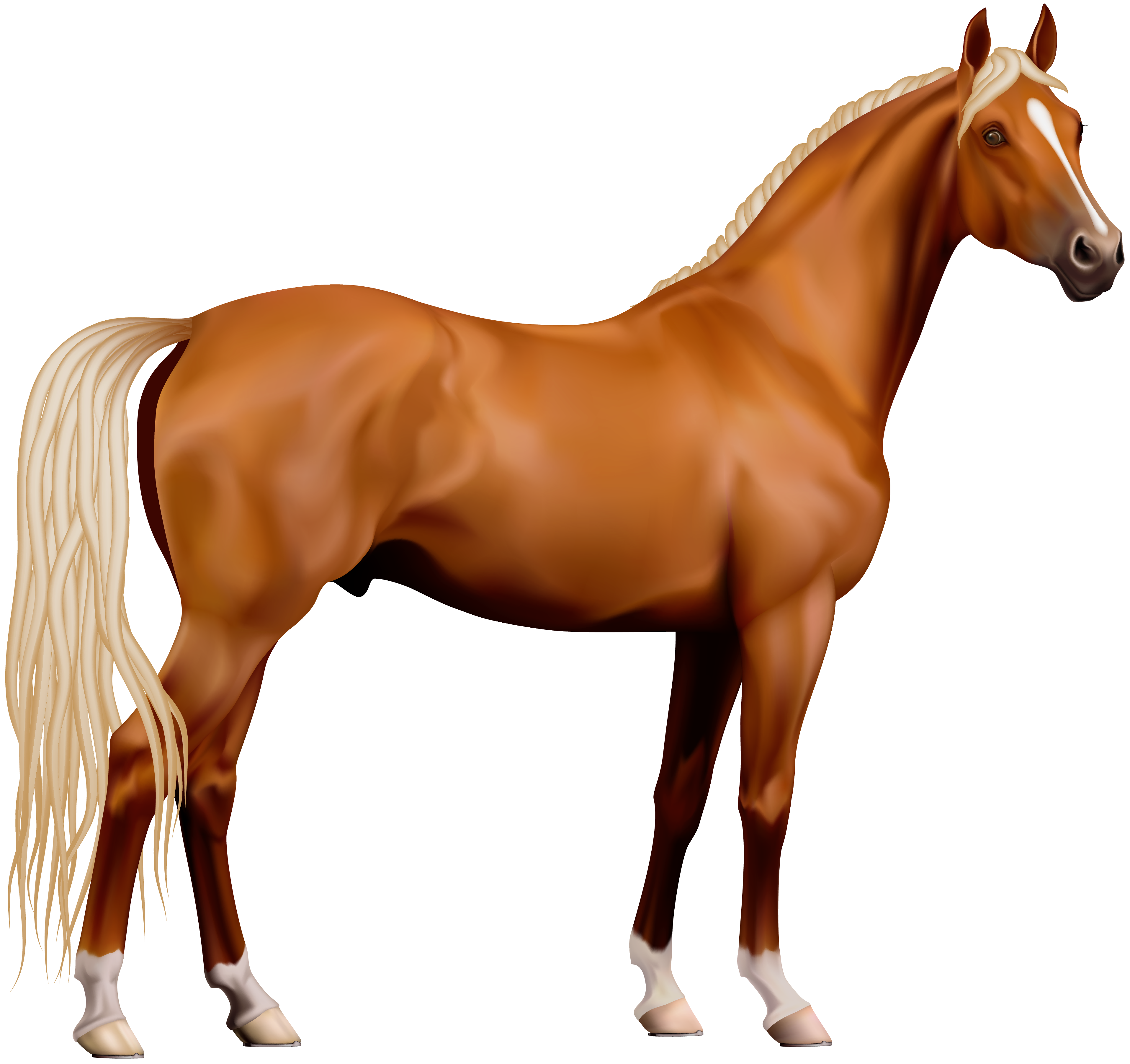 Free Horse Cliparts Transparent, Download Free Clip Art, Free Clip.