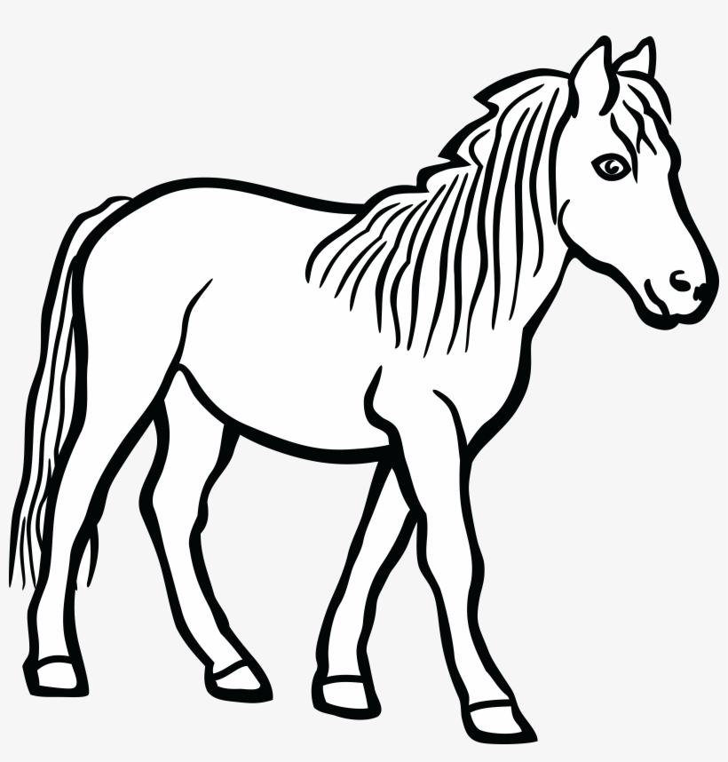 Free Clipart Of A Horse.