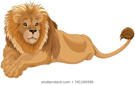 Lion Clipart Images Stock Photos Vectors Shutterstock Limited Free.
