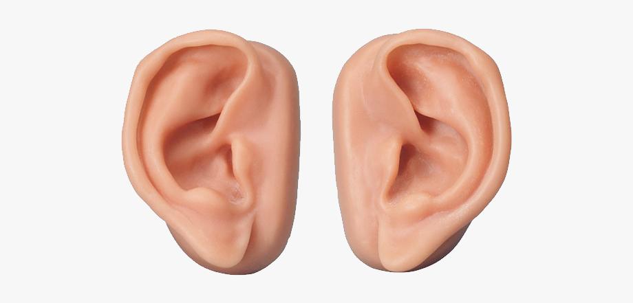 Human Ears Clipart.