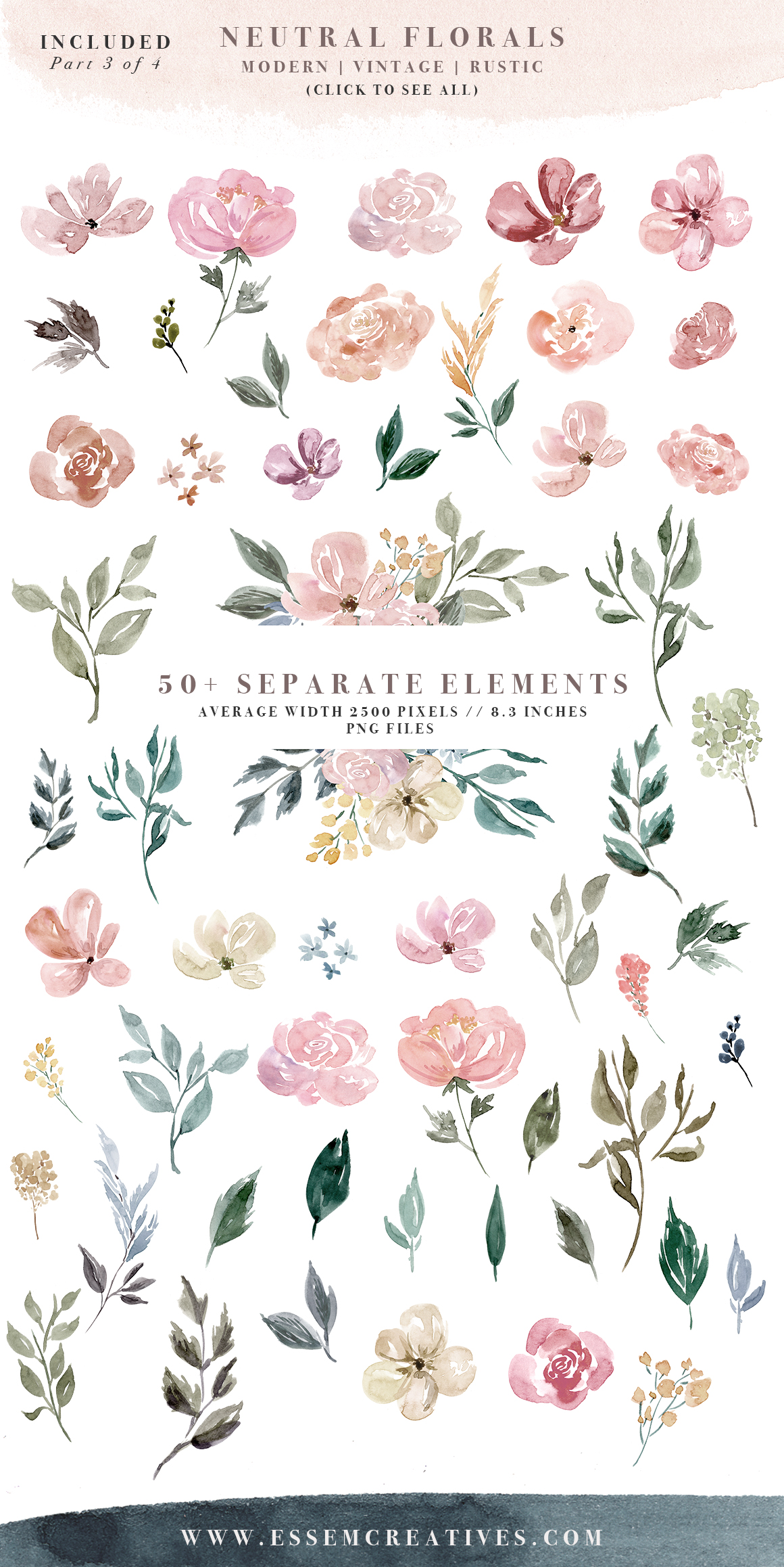 Neutral Watercolor Flowers Clipart, Floral Borders & Frames for Wedding.