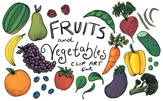 Fruits and Vegetables Clip Art, hand drawn clip art, hand drawn vegetable  clip art, hand drawn fruit clip art, commercial use clip art.