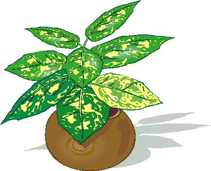 Free Plants Cliparts, Download Free Clip Art, Free Clip Art on.
