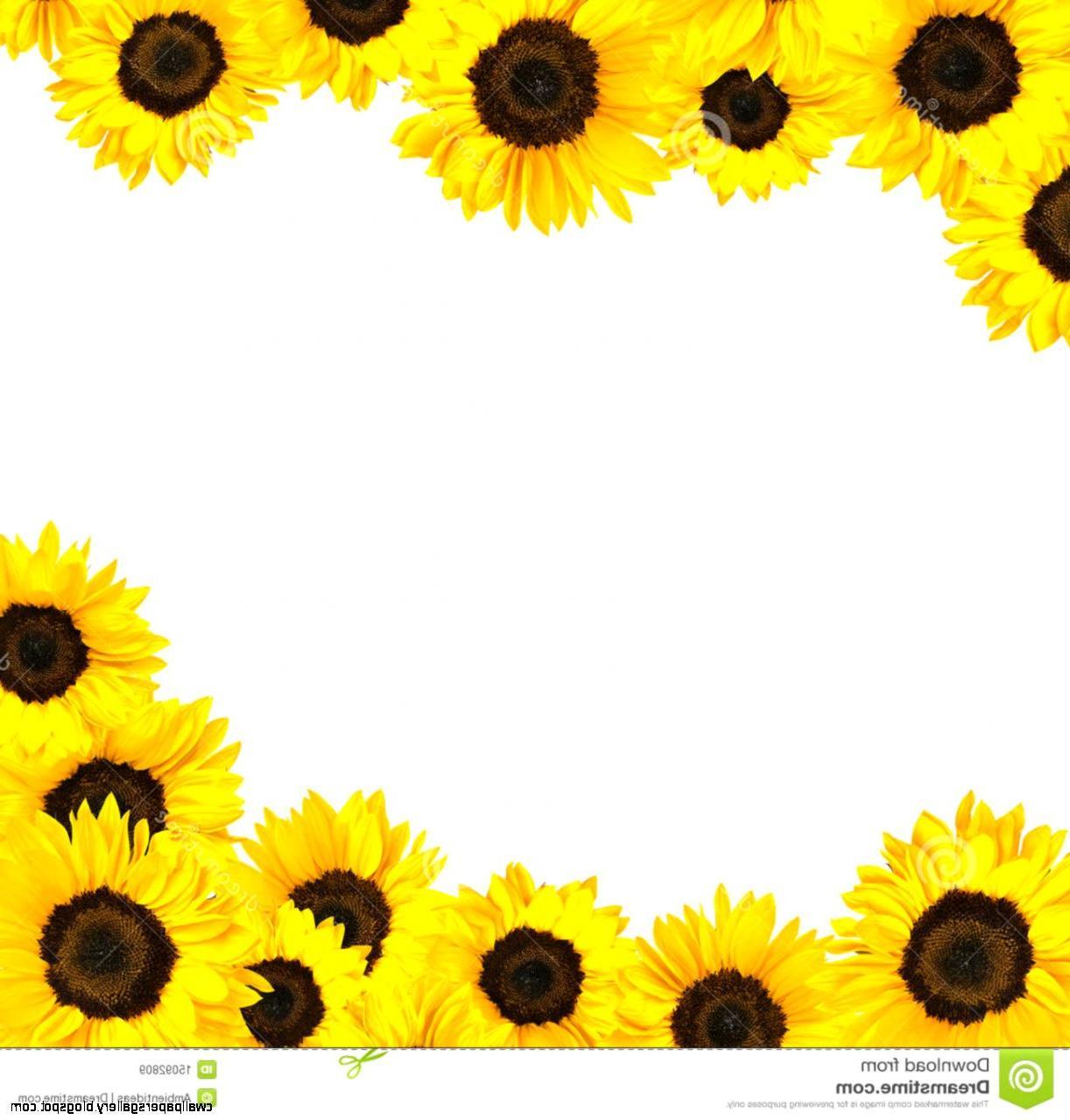 90+ Sunflowers Clipart.