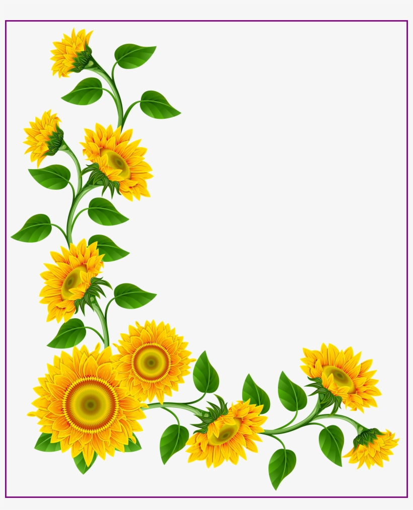 Sunflowers Png Simple Watercolor.