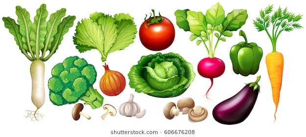 Vegetables clipart images 2 » Clipart Station.