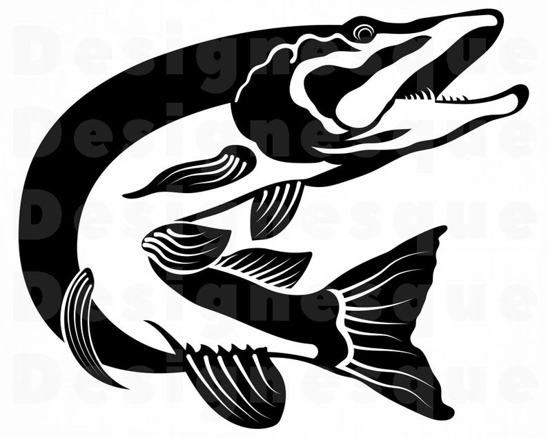 Northern Pike SVG, Fishing Svg, Fish Svg, Fishing Clipart, Fishing Files  for Cricut, Fishing Cut Files For Silhouette, Dxf, Png, Eps, Vector.