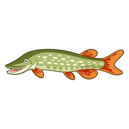 71 Northern Pike Stock Illustrations, Cliparts And Royalty Free.