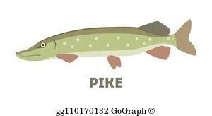 Northern Pike Clip Art.