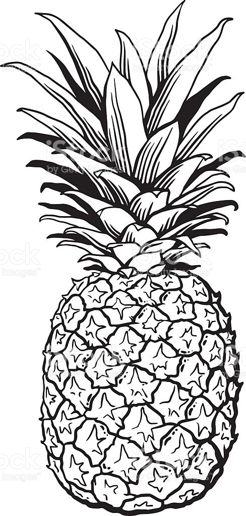 Pineapple Black And White Clipart.