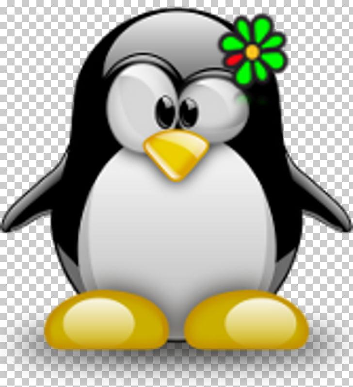 Tux racer tux escribiendo pingüino linux, pingüino PNG.