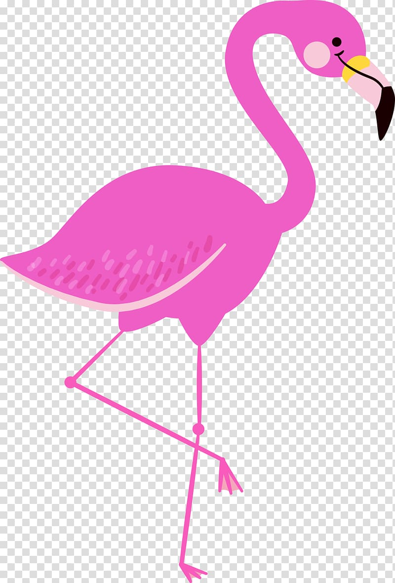 Pink flamingo , Flamingo , flamingo transparent background.
