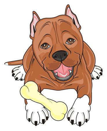 1,784 Pit Bull Stock Illustrations, Cliparts And Royalty Free Pit.