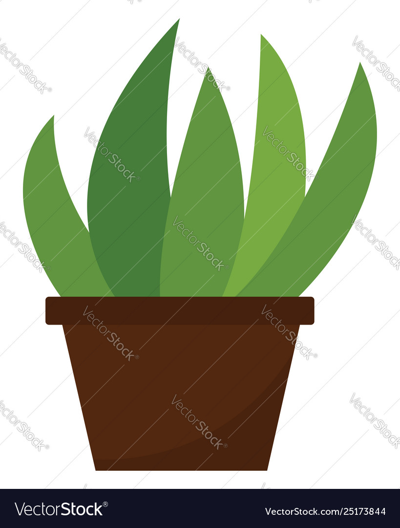 Clipart home plant growing in a brown pot or.