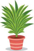 Free Plants Clipart.