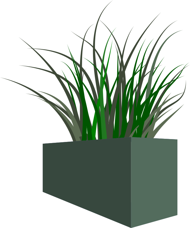 Free Clipart: Grass in square planter.