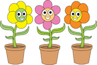 Search Results for planters.