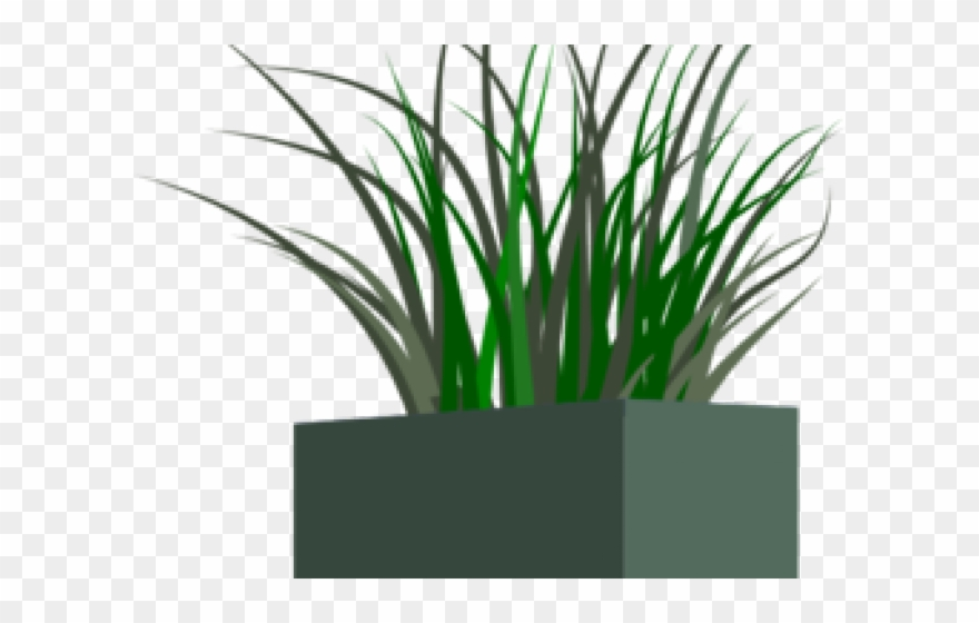 Pansy Clipart Planter.