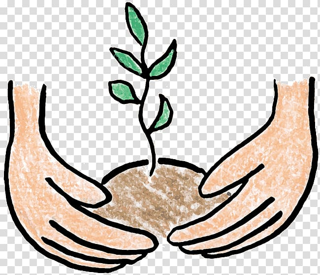Tree planting , plant transparent background PNG clipart.