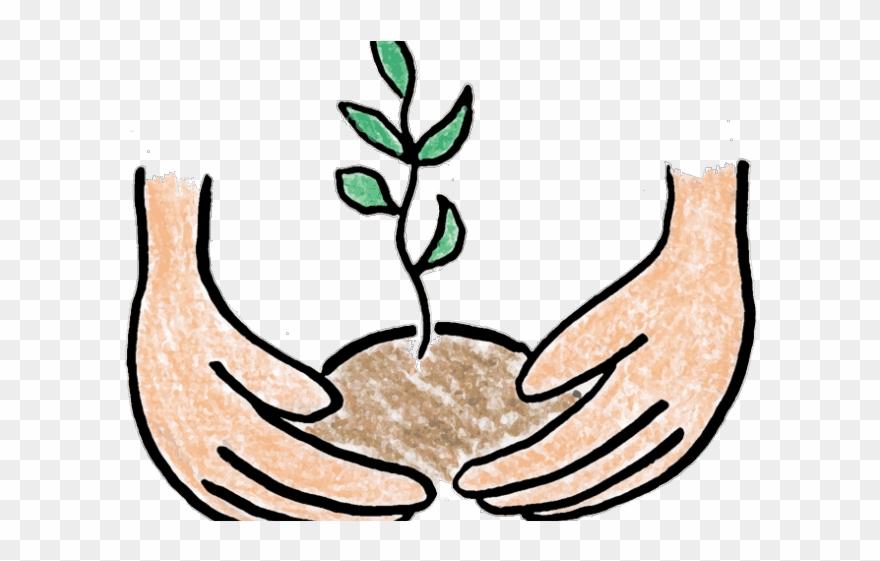 Pot Plant Clipart Baby.