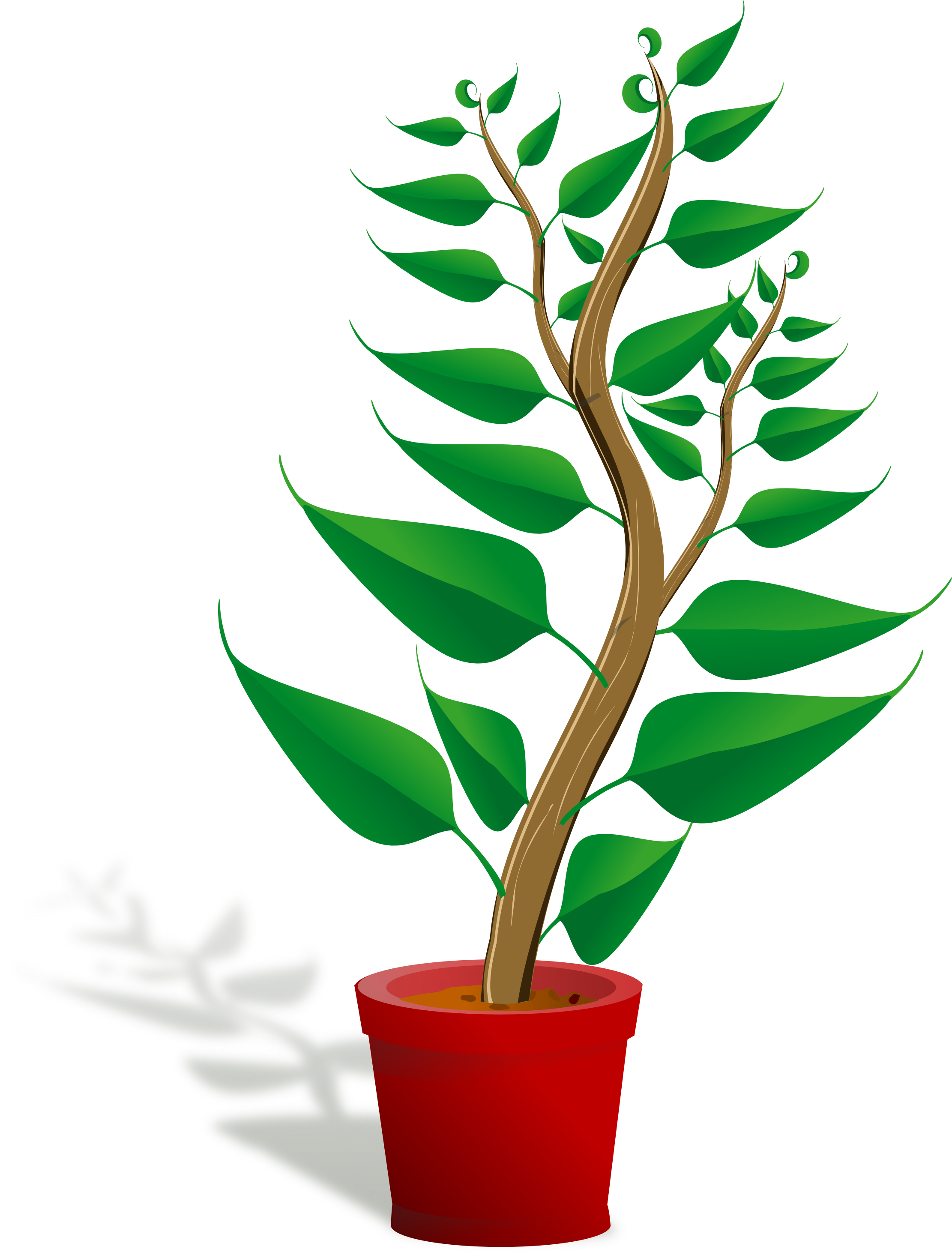 Plants Clip Art For Children.