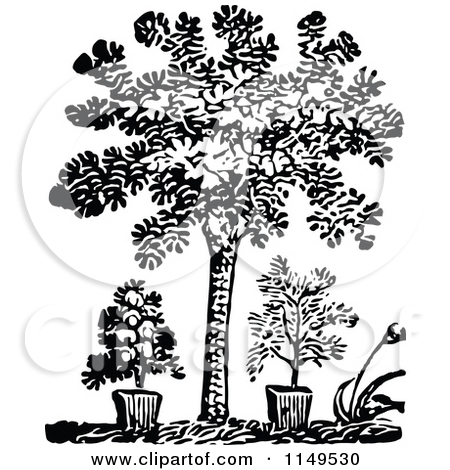 Plants And Trees Black And White Clipart.