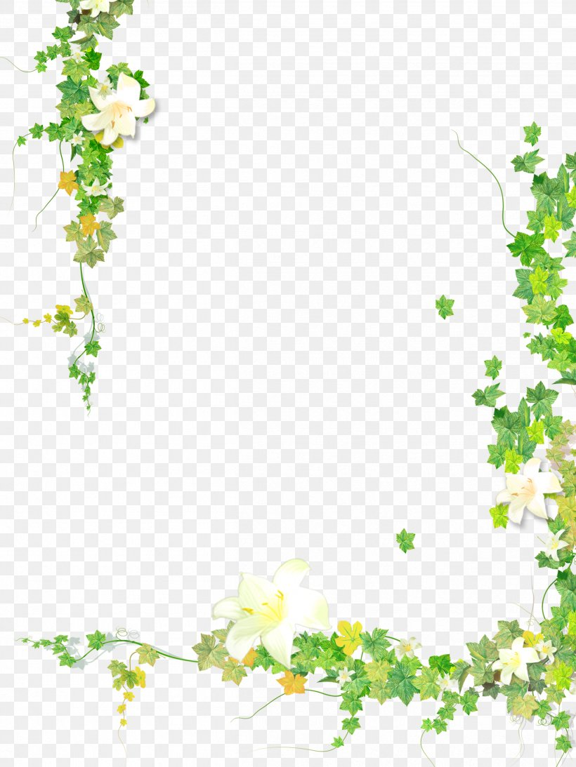 Clip Art Plants Borders And Frames Image Leaf, PNG.