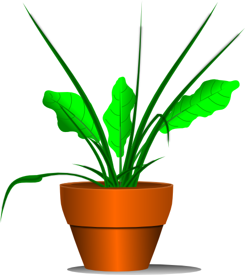 Free Free Plant Clipart, Download Free Clip Art, Free Clip.
