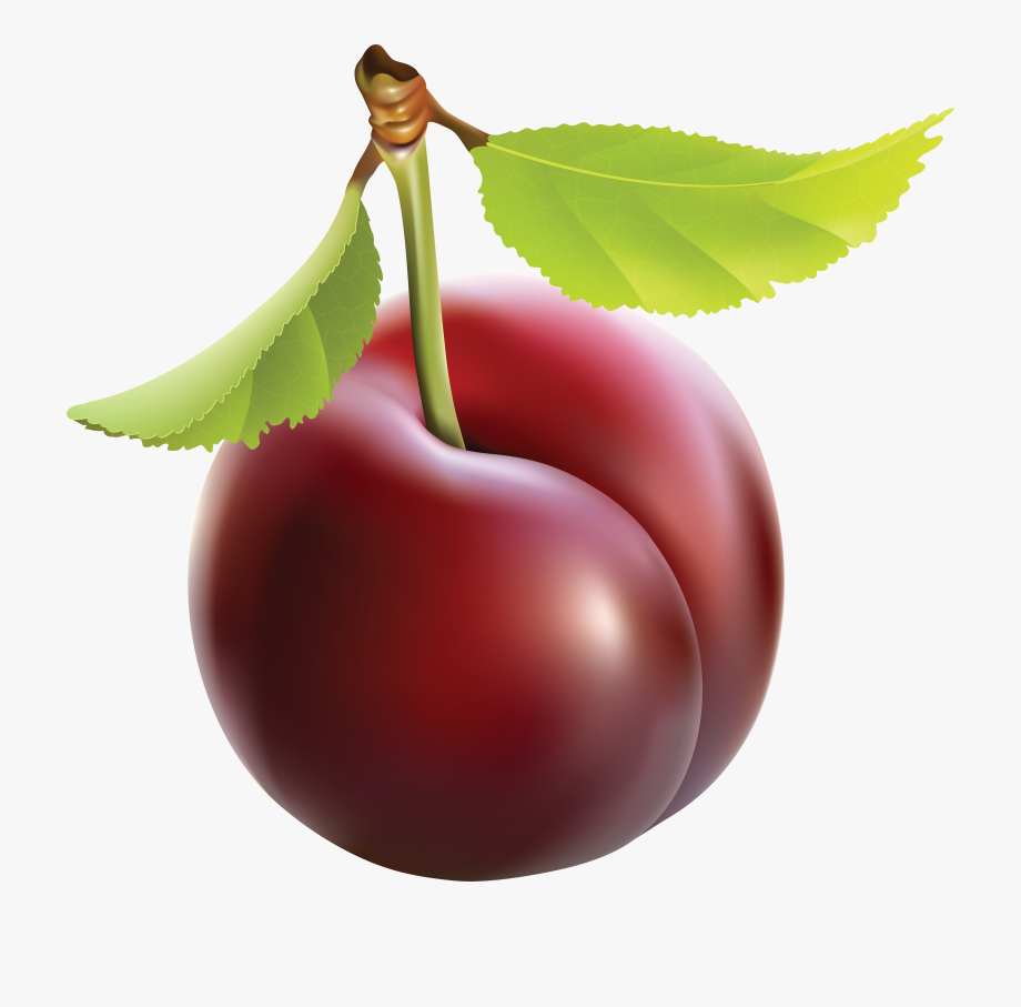 Cherry Clipart Plums.