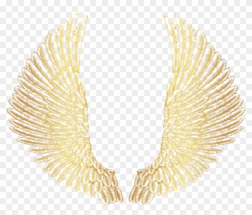 Free Png Download Gold Wings Clipart Png Photo Png.