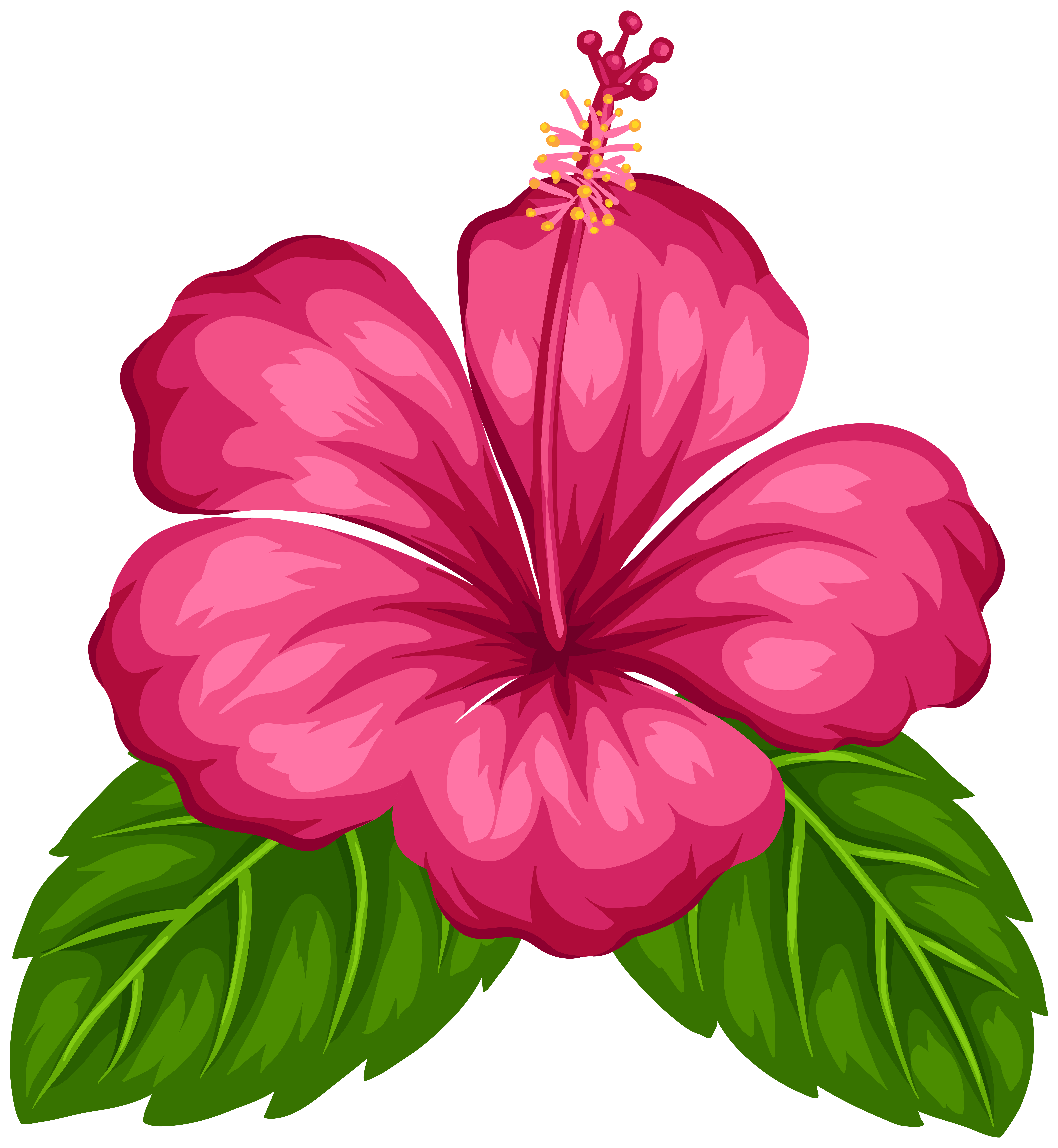 Exotic Flower PNG Clip Art.