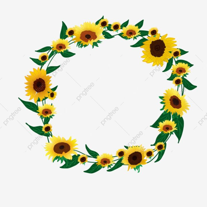 PNG Clipart Plant Hand Painted Fresh Sunflower Border Frame.