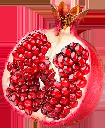 Free Pomegranate Cliparts, Download Free Clip Art, Free Clip.