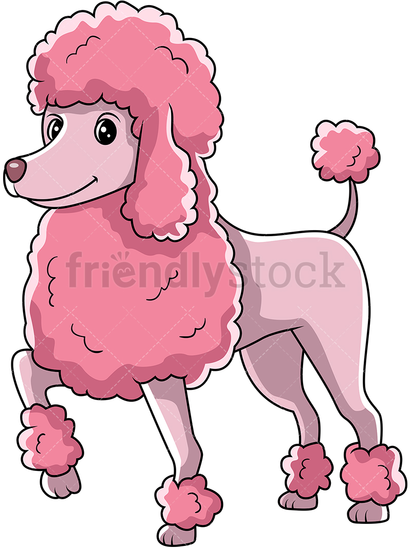 Pink Poodle Dog Standing With One Paw Up.