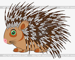 Animal porcupine is insulated.