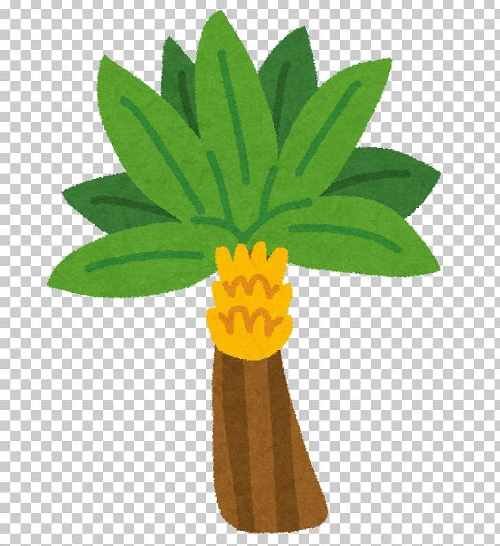Banaani T.