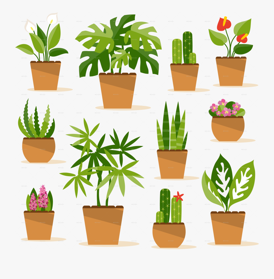 Indoor Potted Plant Png.