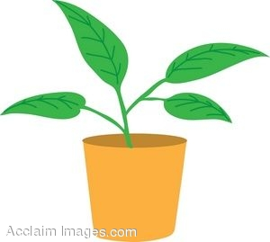Free Potted Plant Cliparts, Download Free Clip Art, Free.