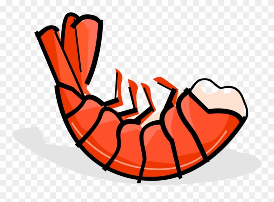 Seafood Clipart Prawn.
