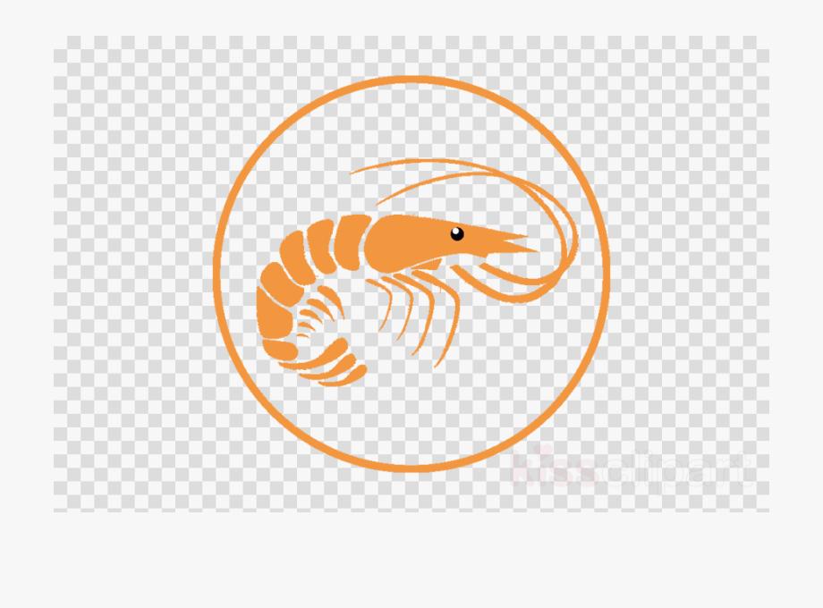 Shrimp Clipart Prawn.