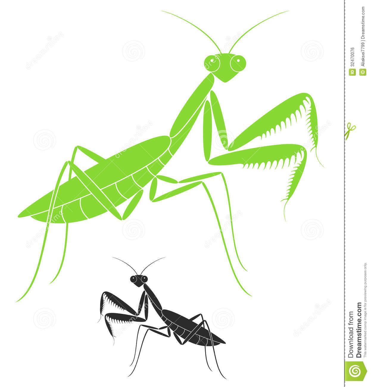 praying mantis clipart.