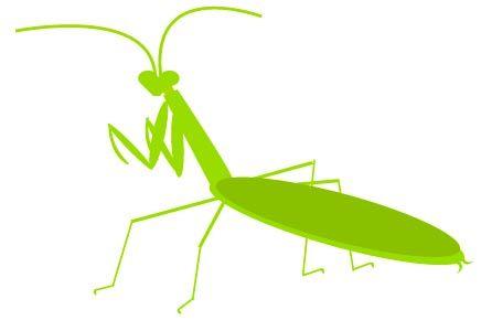 Praying Mantis Clip Art.
