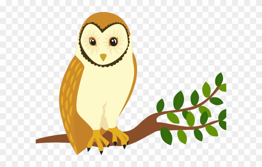 Bird Of Prey Clipart Barn Owl.