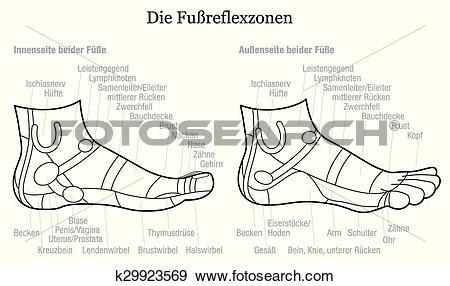 Clip Art of Foot Reflexology Profile Outline k29923569.