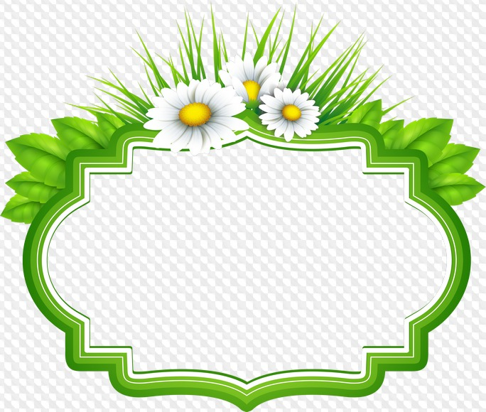 PSD, 10 PNG, Round and oval Frames clipart with flowers.