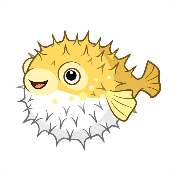 Top Puffer Fish Clip Art Vector Graphics And Illustrations.
