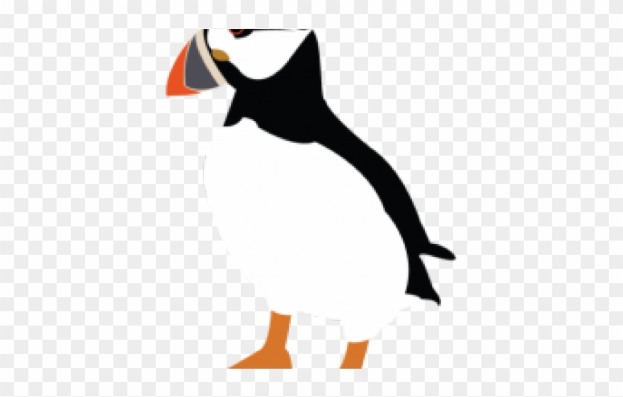Puffin Clipart Transparent.