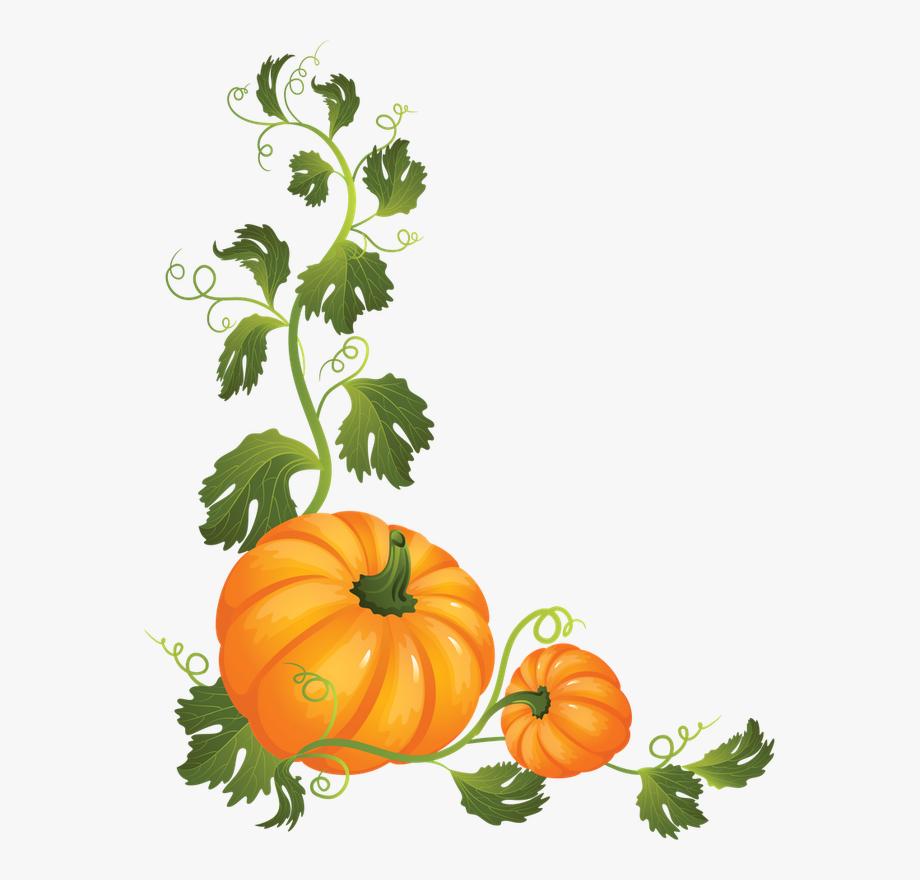Discover Ideas About Pumpkin Vine.